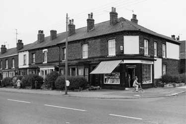 Nos. 397, Corner Shop; 395; 393; 391 etc., Shoreham Street from the junction of Cherry Street